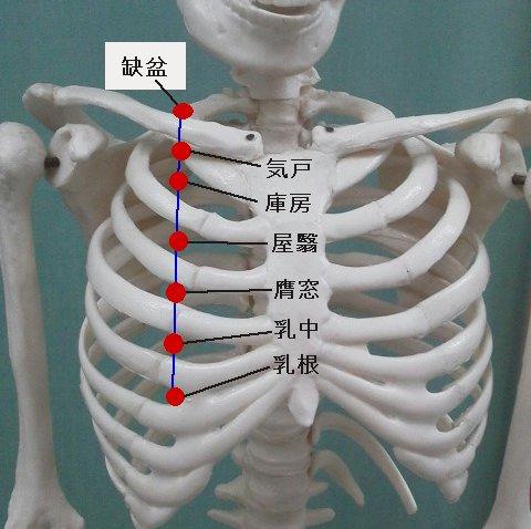 胃経.jpg